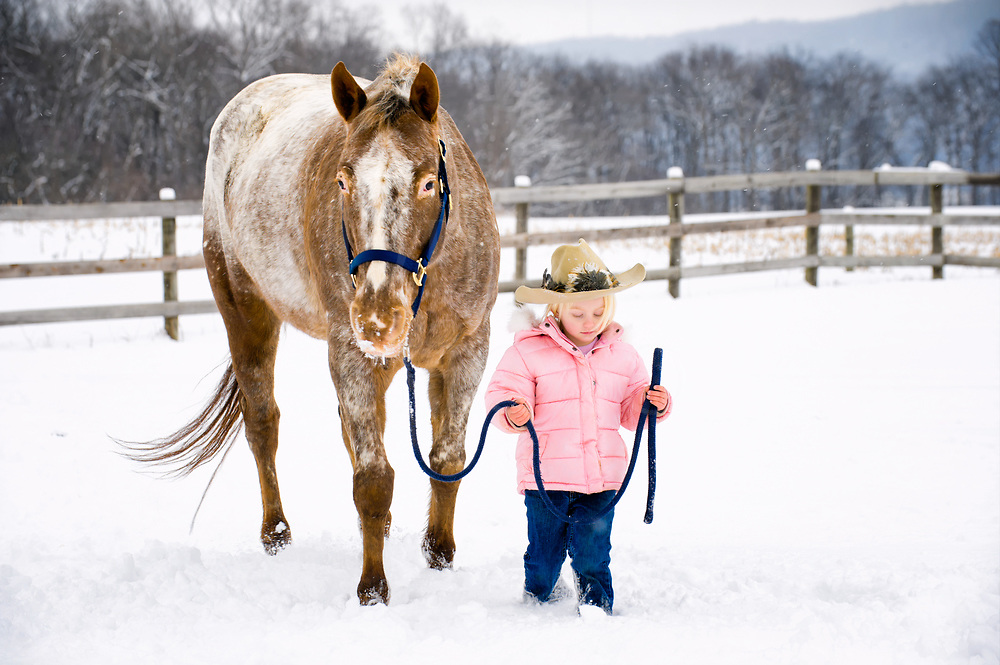 A little blonde girl leads her big Appaloosa horse through the pasture in falling snow, and the broad brimmed hat keeps the tickling snow off her nose. Princess follows the little one right along easily as always, and she knows the barn is warm and the oats will be very good on a cold day. Maybe there will be some dried corn on the cob too, for the warmth it brings to the inside of a horse.