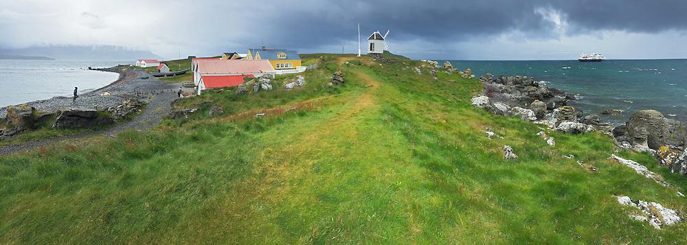 Common Eider sustainable family farm for harvesting Eiderdown on Vigur Island, Iceland.