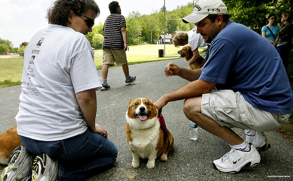 Talking about dogs are left to right, Teri Kershow of Rochester, N.H. and Troy LeFebvre of Auburn with his dog Chester, at the NHSPCA Paws Walk at Stratham Hill Park in Stratham, N.H., Sunday, June 1, 2008. (Portsmouth Herald Photo/Cheryl Senter)