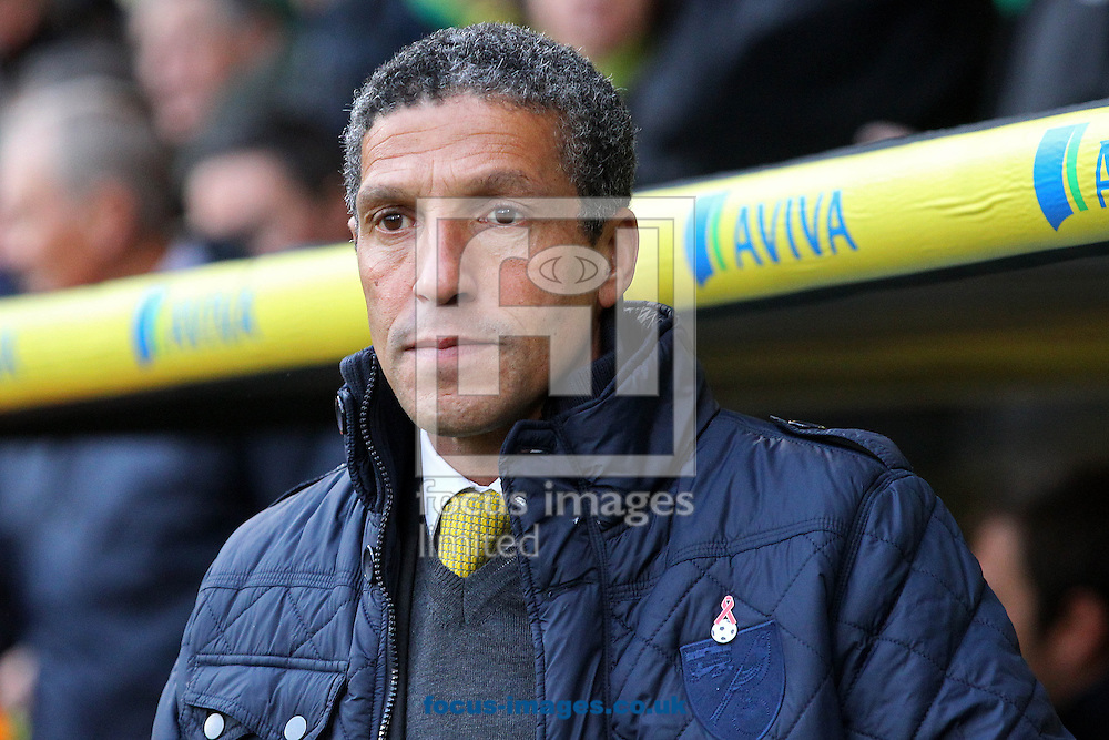 Picture by Paul Chesterton/Focus Images Ltd +44 7904 640267<br /> Norwich Manager Chris Hughton before the Barclays Premier League match at Carrow Road, Norwich.