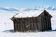 Old barn and the Wallowa Mountains, Northeast Oregon.