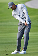 Tiger Woods hits a wedge onto the green from the 17th fairway. Woods returned to Riviera Country Club to get in a practice round before the Genesis Open. It is Woods first return to Riviera in a number of years. The tournament begins on Thursday. Pacific Palisades, CA 1/13/2018 (Photo by John McCoy)