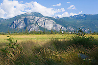 Stawamus Chief Mountain and grassy field near Squamish, BC Canada