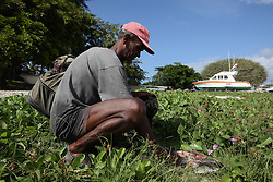 MAURITIUS FLIC EN FLAC 4MAY13 - An artisanal fisherman in Flic en Flac, Mauritius lands his catch from the lagoon after a morning of fishing.<br /> <br /> The Greenpeace ship Esperanza is on patrol in the Indian Ocean documenting fishing activties.<br /> <br /> jre/Photo by Jiri Rezac / Greenpeace
