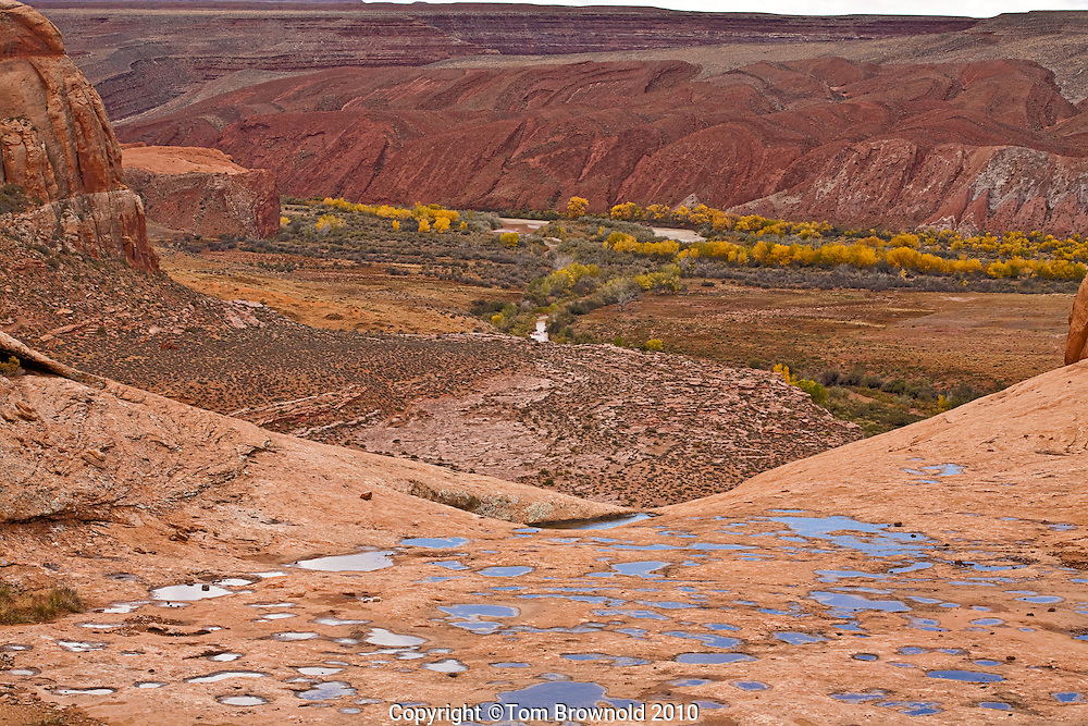 Water pockets in the Navajo sandstone, chinle creek confluence with the San Jaun River as it turns into it's canyon