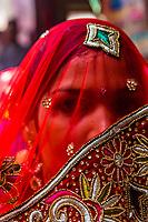 A veiled woman, Chhadi Mar Holi (local Holi celebration), Holi Festival (Festival of Colors), village of Gokul, near Mathura, Uttar Pradesh, India.