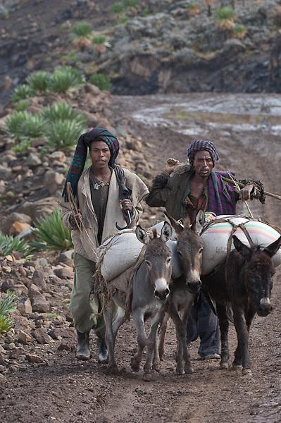 Shepherds at Simien Mountains N.P., Ethiopia