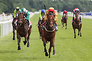 GOLD MOUNT (5) ridden by Andrea Atzeni and trained by Ian Williams winning The Listed Sky Bet Race To The Ebor Grand Cup over 1m 6f (£50,000)   during the MacMillan Charity Raceday held at York Racecourse, York, United Kingdom on 15 June 2019.