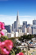 San Francisco City Skyline Photos