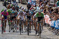 Geraardsbergen, Belgium - Eneco Tour :: Stage 7 - 18th August 2013 - The peloton with Tom DUMOULIN who lost his leaders jersey
