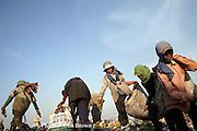 "Workers look for recyclable material among the 700 tons of garbage delivered daily at The Stung Meanchey Landfill in Phnom Penh, Cambodia. 2000 workers, including 600 children labor through dump on a daily basis to earn their livings. The dump, known for its poor sanitation is called ""Smokey Mountain"" by local Khmers."