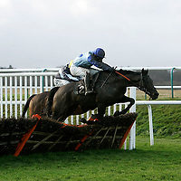 Lingfield 15th December 2012
