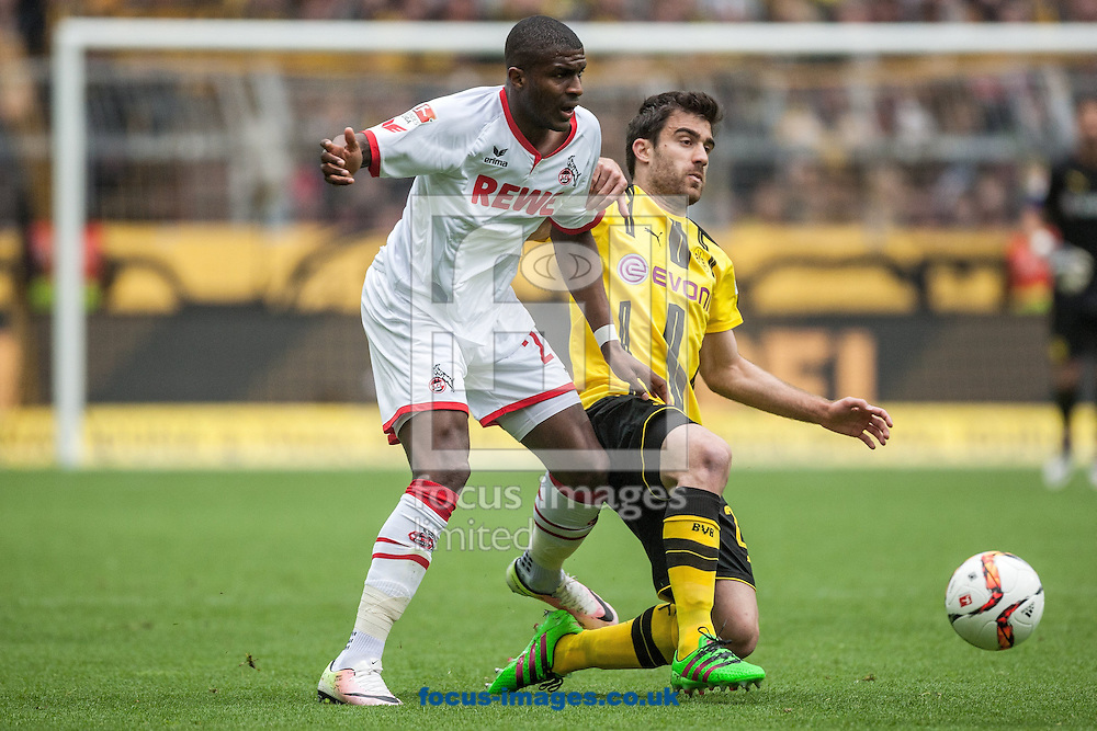 Sokratis of Borussia Dortmund and Anthony Modeste of FC Cologne during the Bundesliga match at Signal Iduna Park, Dortmund<br /> Picture by EXPA Pictures/Focus Images Ltd 07814482222<br /> 14/05/2016<br /> ***UK &amp; IRELAND ONLY***<br /> EXPA-EIB-160514-0074.jpg