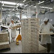 Fasi di lavorazioni tra nastri trasportatori pieni di caramelle, impastatrici, e confezionatrici nello stabilimento della Pastiglie Leone a Collegno (TO)