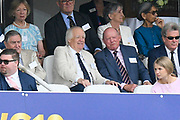 Sir Tim Rice watching from the Grand Stand during the ICC Cricket World Cup 2019 Final match between New Zealand and England at Lord's Cricket Ground, St John's Wood, United Kingdom on 14 July 2019.