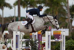 Farrington Kent (USA) - Uceko<br /> Horseware GP CSI 2*<br /> Wellington 2012<br /> © Hippo Foto - Cealy Tetly