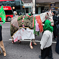 LONDON, ENGLAND - FEBRUARY 07:  A white horse representing Imam Husain horse Zuljina during the 29th Arbaeen Procession on February 7, 2010 in London, England. Arbaeen occurs 40 days after the day of Ashura, the commemoration of the martyrdom of Imam Husain in Karbala  (Photo by Marco Secchi/Getty Images)