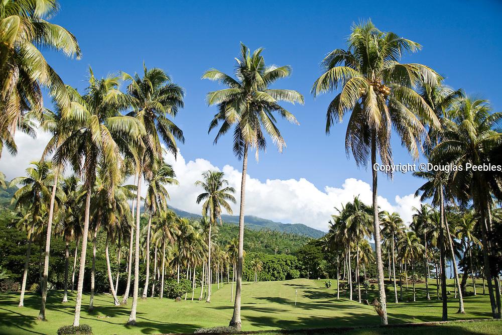 Golf course, Taveuni Estates, Taveuni, Fiji