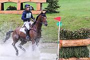 Mr Sneezy ridden by James Avery in the Equi-Trek CCI-L4* Cross Country during the Bramham International Horse Trials 2019 at Bramham Park, Bramham, United Kingdom on 8 June 2019.
