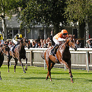 Newmarket 16th August 2013