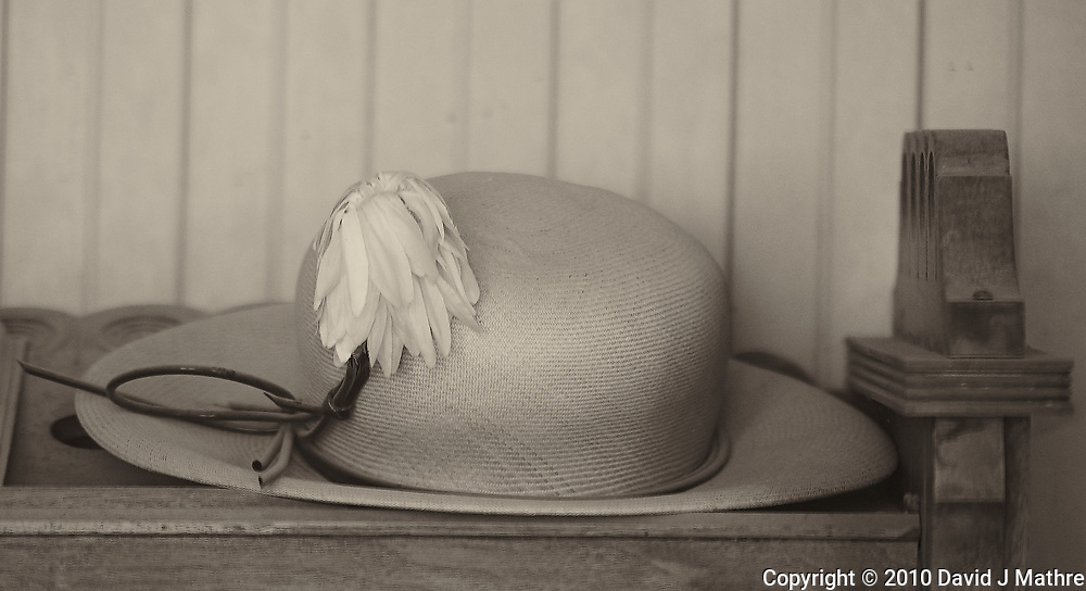 Schoolmarm's Hat. Image taken with a Nikon D3s camera and 70-200 mm f/2.8 lens (ISO 800, 200 mm, f/2.8, 1/1000 sec).
