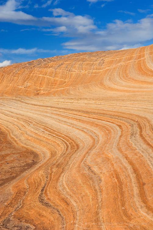 Colorful sandstone slickrock cross-bedding, Vermilion Cliffs Wilderness Arizona