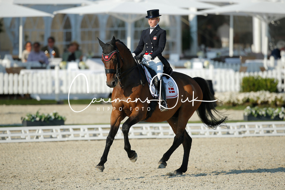Aaen Anne Sofie, (DEN), Schambuka Soelyst<br /> Grand Prix U25<br /> CDIO Hagen 2015<br /> &copy; Hippo Foto - Stefan Lafrentz