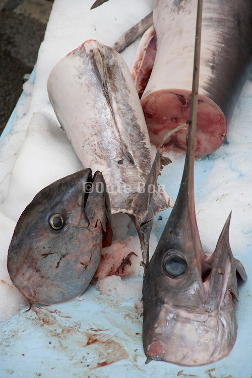 swordfish displayed at a fish market