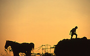 Hay wagon and team silhouette, Lancaster, PA