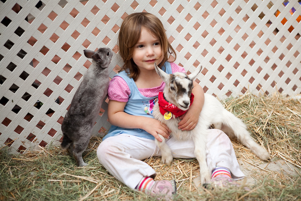 Molly Kaplan, 2, sits with a bunny and a goat.