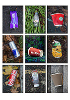Litter montage by Lionel Derimais