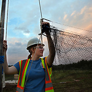 STERLING, VA - JUN13: Bethany Gregory, a field technician with GAI Consultants, hangs a mist net, July 13, 2015, for a bat census to make sure the planned Silver Line train yard near Dulles Airport doesn't impact the bats living in the woods near the site. Fine 'mist nets' are hung from polls to capture bats and determine whether there is a threatened bat species in the area. The bats are then released. (Photo by Evelyn Hockstein/For The Washington Post)