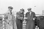 1962-25/04 Dublin Cattle Market