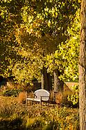 20131025 Autumn