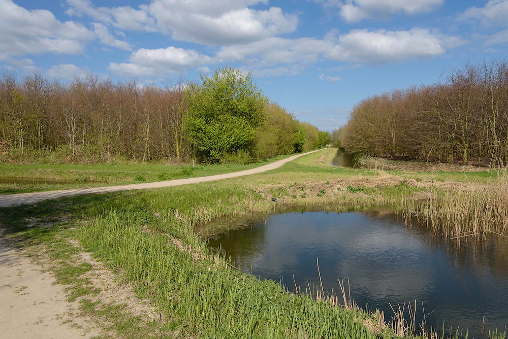 Rhoon, Valckestein, Zuid Holland, Netherlands