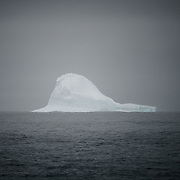 First Iceberg, near Cape Shirreff, South Shetland Islands