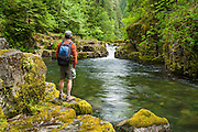 Hiker on Brice Creek Trail at pool below waterfall and jumping rock; Umpqua National Forest, Oregon.