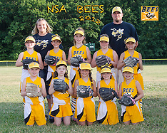 Bees Softball Team & Individual, June 2012