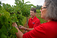 Vance County extension agent Paul McKenzie looks over Backyard Farm & Vineyard's grape production with owner Deborah Price.