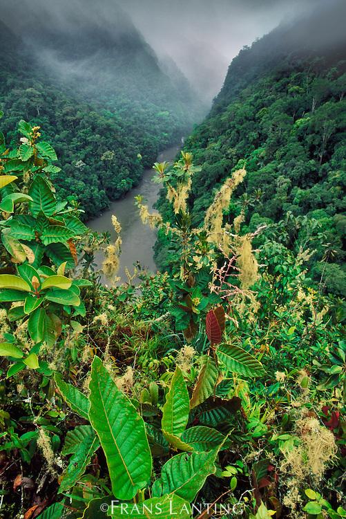 Pongo de Mainique gorge on lower Urubamba River, Vilcabamba, Peru