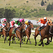 Race horses and jockey's in action during a day at the Races at the Cromwell Race meeting, Cromwell, Central Otago, New Zealand. 27th November 2011. Photo Tim Clayton