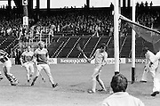 Leinster Senior Hurling Final .Kilkenny v Wexford.Croke Park.24.07.1977  24th July 1977