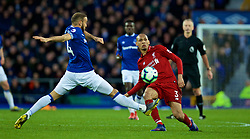 LIVERPOOL, ENGLAND - Sunday, March 3, 2019: Liverpool's Fabio Henrique Tavares 'Fabinho' during the FA Premier League match between Everton FC and Liverpool FC, the 233rd Merseyside Derby, at Goodison Park. (Pic by Laura Malkin/Propaganda)
