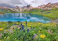 Ice Lake Basin, Silverton, Colorado, wildflowers, turquoise, lake, water, mountains