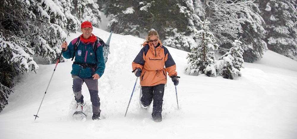 March 2009.Jura mountains - France..PHOTO: EZEQUIEL SCAGNETTI.