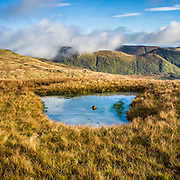 Landscape, small tarn on Red Screes, Kirkstone Pass, Cumbria, Lake District,