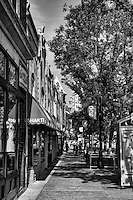 300 Block of State Street (monochrome)