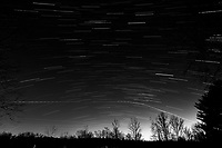 Winter Nighttime Sky Over New Jersey. Composite star trail image 23:30-23:59) taken with a Nikon D810a camera and 19 mm f/4 PC-E lens (ISO 400, 19 mm, f/8, 120 sec). Raw images processed with Capture One Pro and the composite created with Photoshop CC (statistics, maximum). Conversion to B&W with Capture One Pro.
