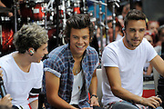23.AUGUST.2013. NEW YORK CITY<br /> <br /> ONE DIRECTION PERFORM ON NBC'S 'TODAY' SHOW AT THE ROCKEFELLER PLAZA IN NEW YORK CITY. THEY WERE ALL WEARING CUSTOMISED EAR PIECES WHICH FEATURED LOGOS AND INITIALS.<br /> <br /> HARRY WAS ALSO GIVEN A KIPPUR BY A FAN<br /> <br /> BYLINE: EDBIMAGEARCHIVE.CO.UK<br /> <br /> *THIS IMAGE IS STRICTLY FOR UK NEWSPAPERS AND MAGAZINES ONLY*<br /> *FOR WORLD WIDE SALES AND WEB USE PLEASE CONTACT EDBIMAGEARCHIVE - 0208 954 5968*