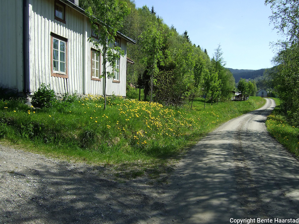 Old houses in Selbu, Norway.